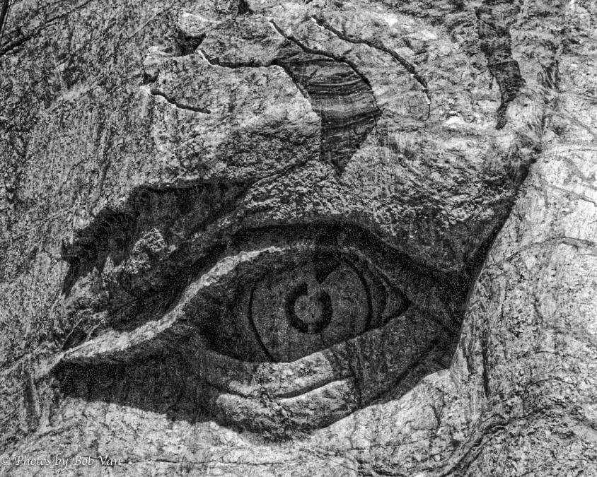 Crazy Horse Eye