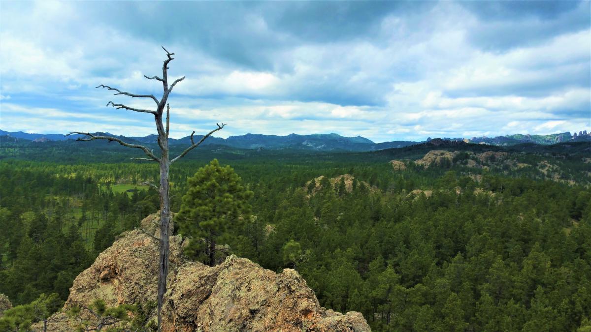 Hiking the Centennial Trail