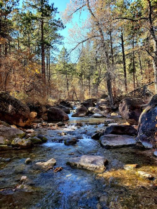 Little Elk Creek in the Fall