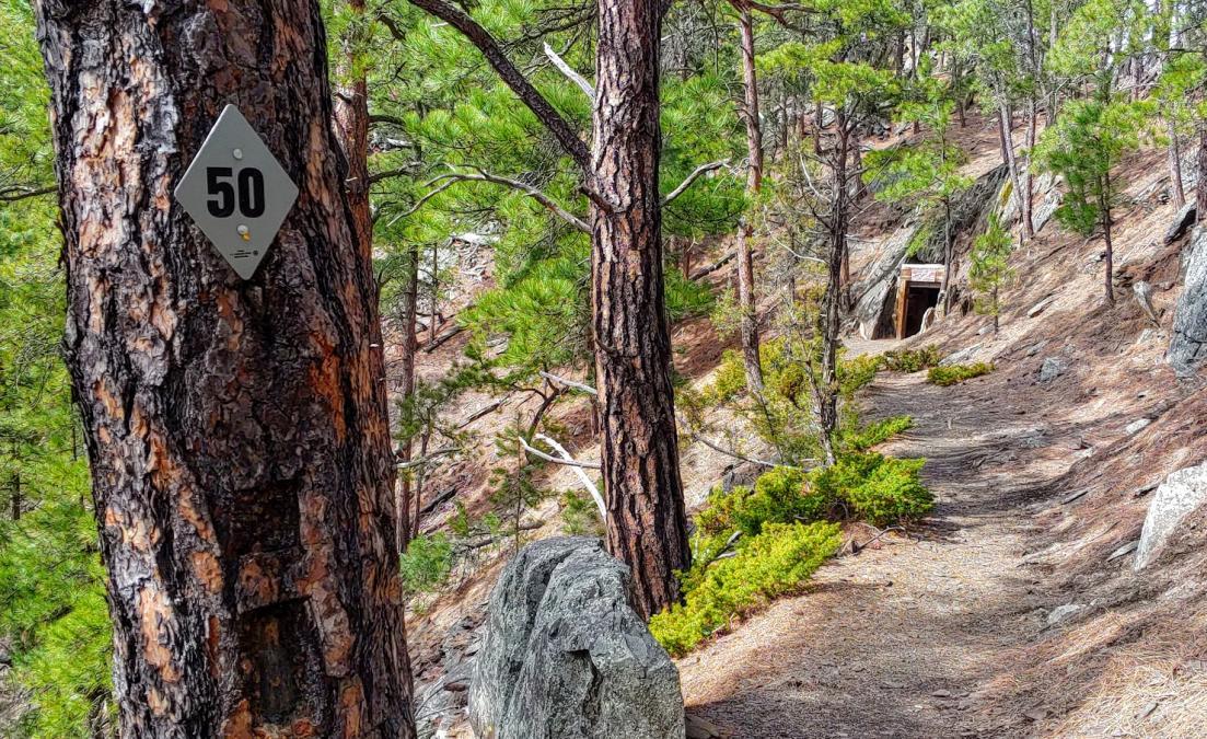 Rockerville Flume Trail