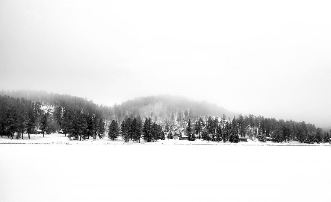 Iron Creek Fog