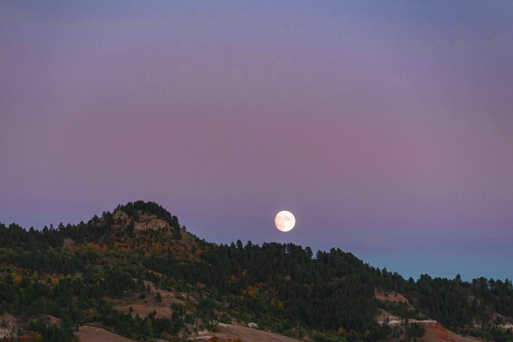 Lookout Under Moonlight