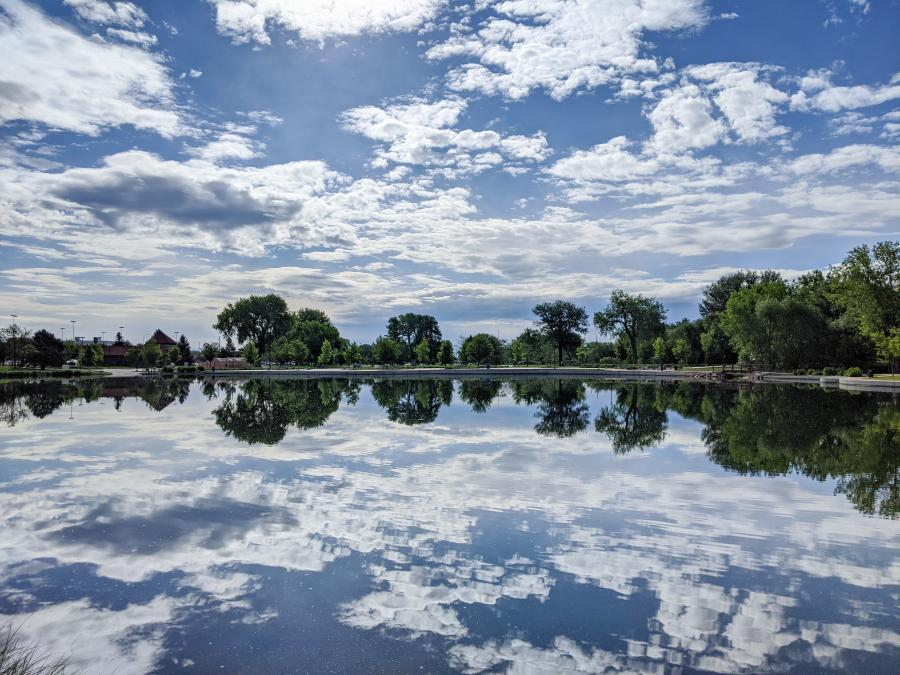 Memorial Park Reflections