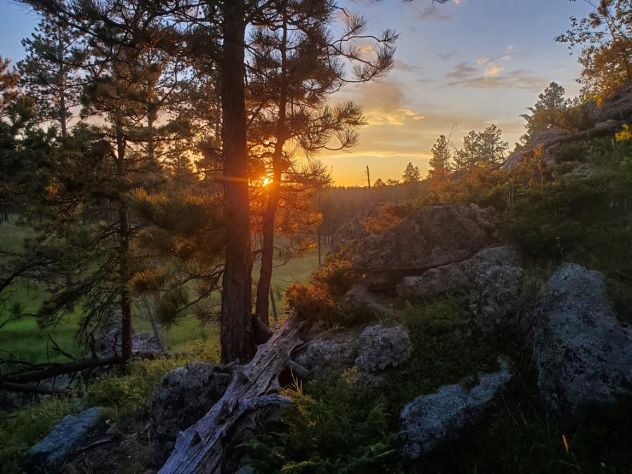 Sunset in Custer State Park
