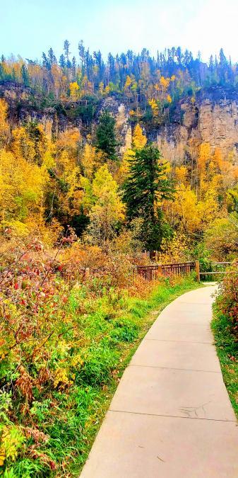 Fall Into Roughlock Falls