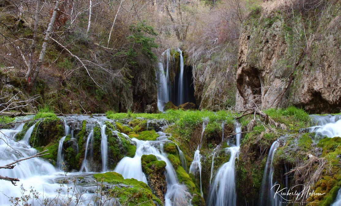 Spring at Roughlock Falls