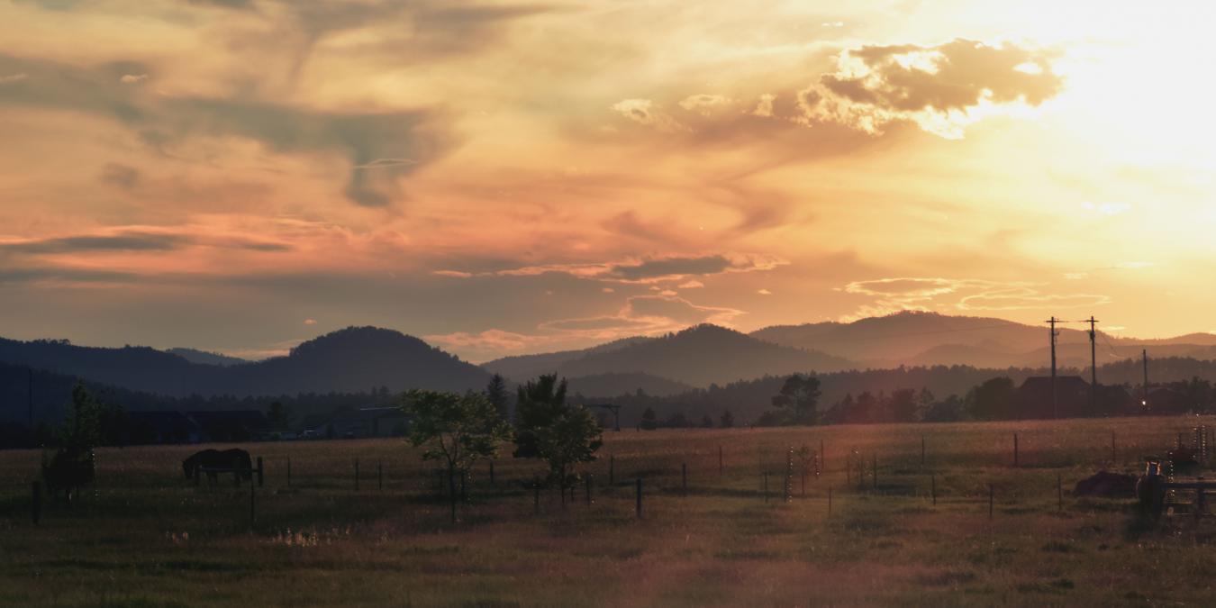 Black Hills Silhouette