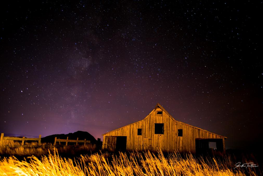 Sturgis Nights