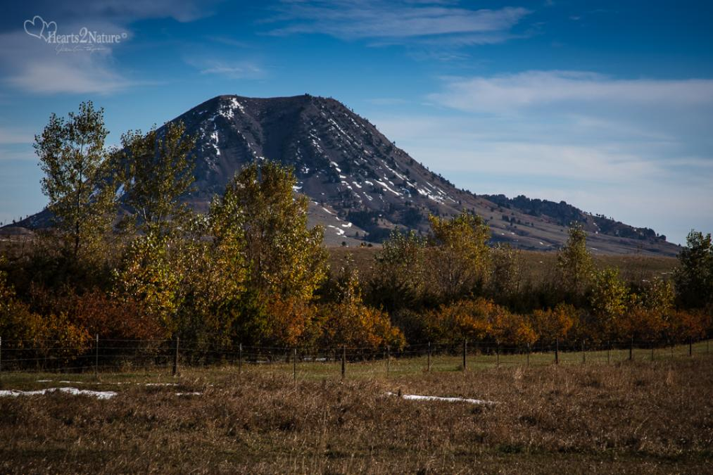 Autumn Hues Color Beautiful Bear Butte SD