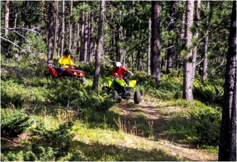 ATV & Off-Roading