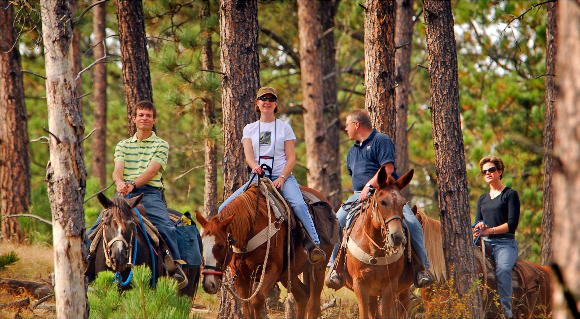 Trail, Wagon Rides & Horse Camps