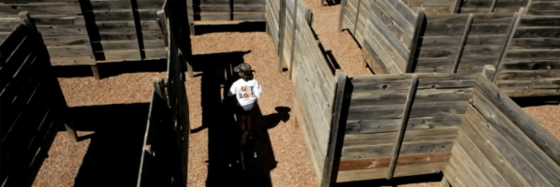 Black Hills Maze & Family Adventure