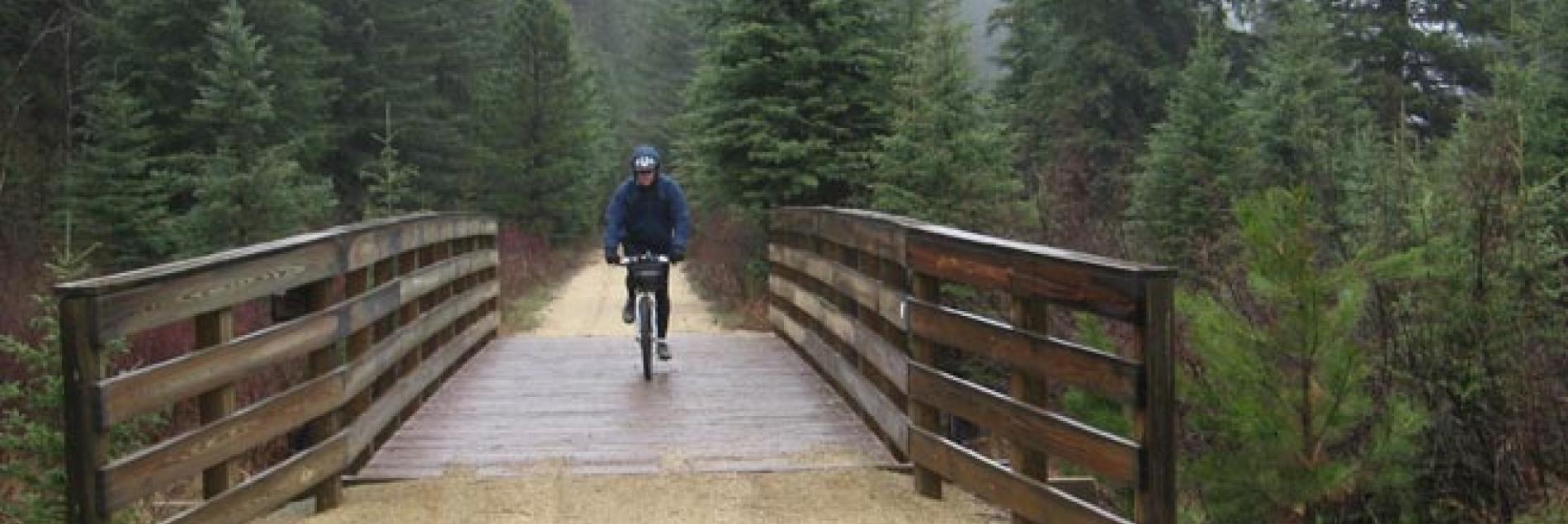 DeadWheels Bicycle Rentals