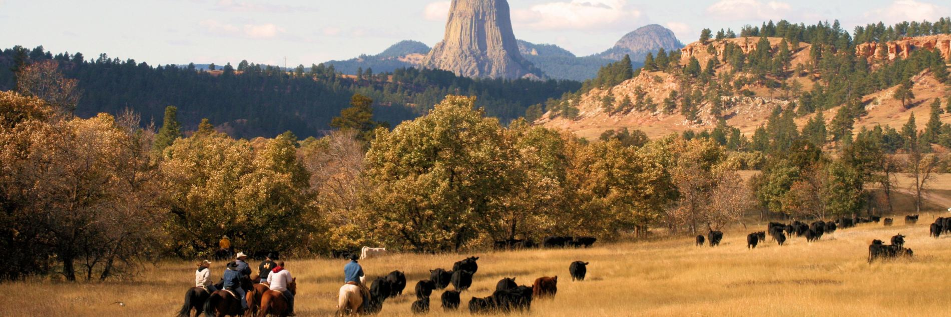 Devils Tower Country - Crook County Wyoming