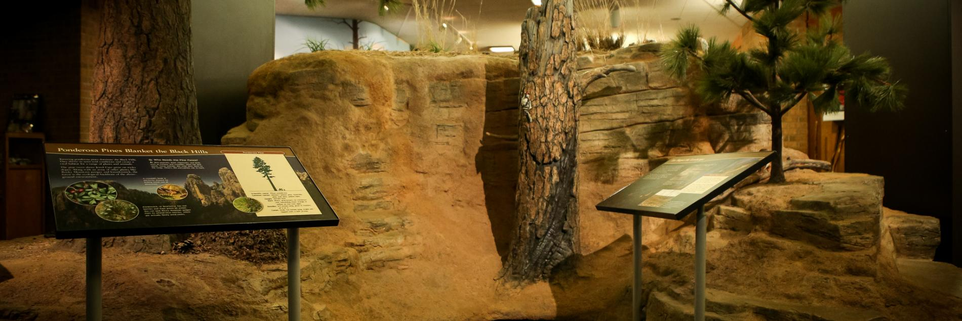Visitor Center | Jewel Cave National Monument | Photo by: Greg Valladolid