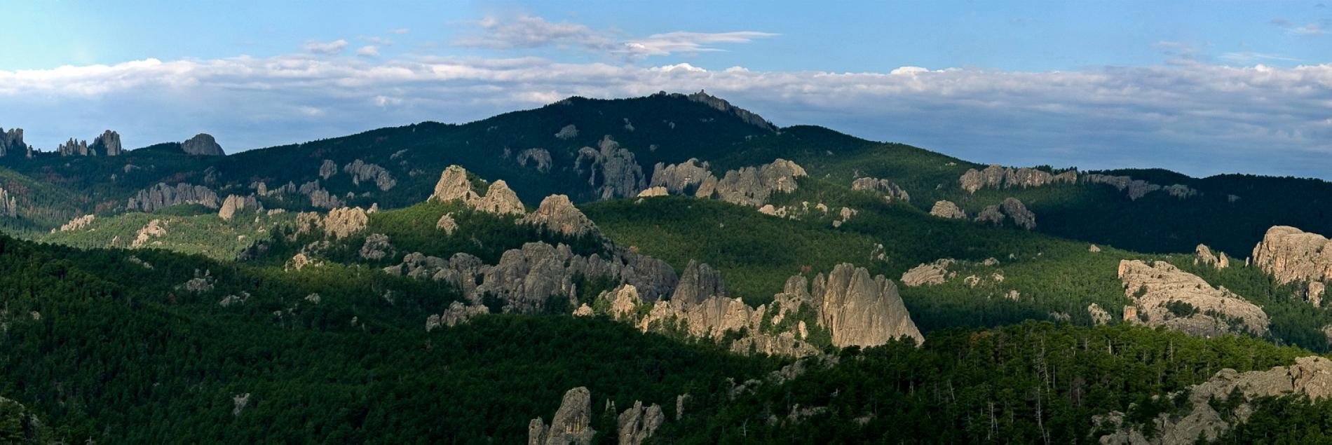 Black Hills National Forest Black Hills Badlands South Dakota