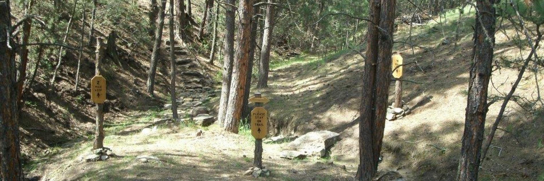 Serenity Trail