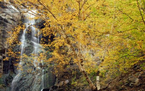Bridal Veil Falls | Spearfish Canyon