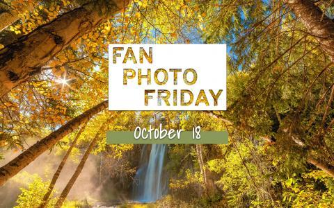 Fan Photo Friday | October 18, 2019