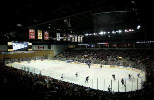 Breakaways and Bears with the Rapid City Rush