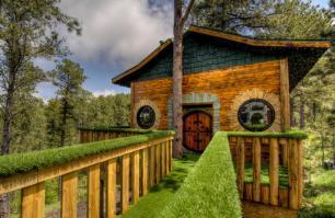 Hobbit Treehouse Living in the Black Hills of South Dakota