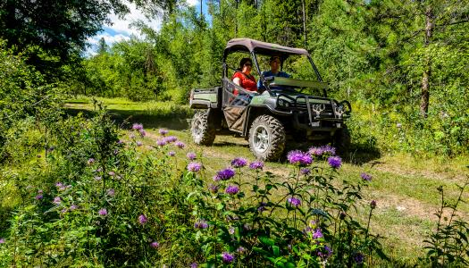 Black Hills National Forest | Spring 2019 Trail Conditions (Updated)