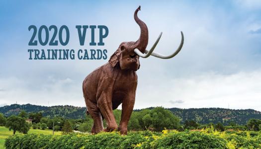 2020 VIP Training Card Program