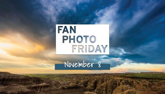 Fan Photo Friday   November 8, 2019