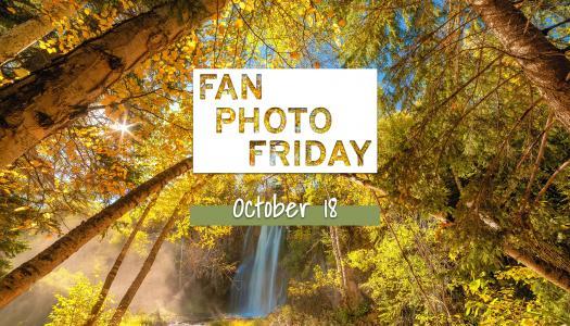 Fan Photo Friday   October 18, 2019