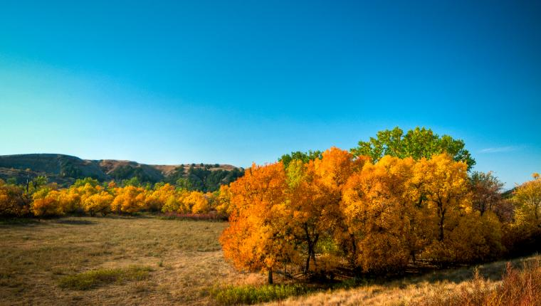 Fall in the Black Hills: Four Reasons to Visit