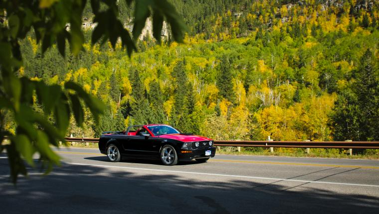 Fall in Love with These Four Color Drives