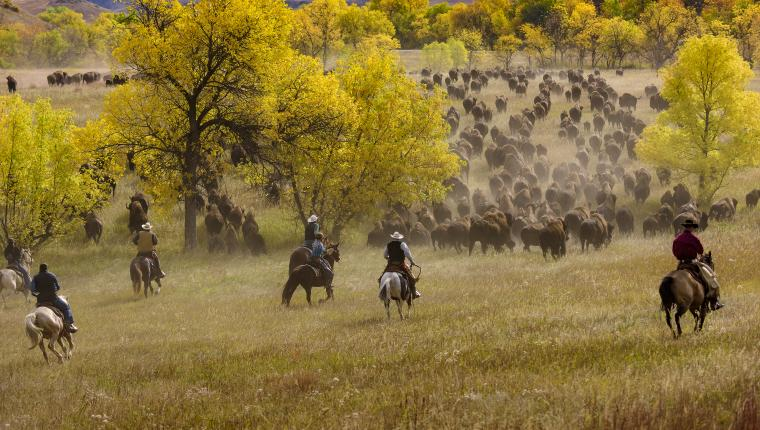 Fall is Full of Colorful Festivals in the Black Hills