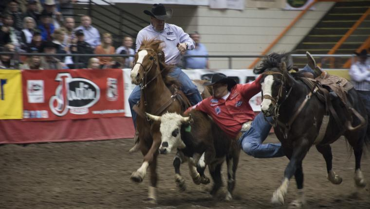Your Guide to the 2021 Black Hills Stock Show & Rodeo®