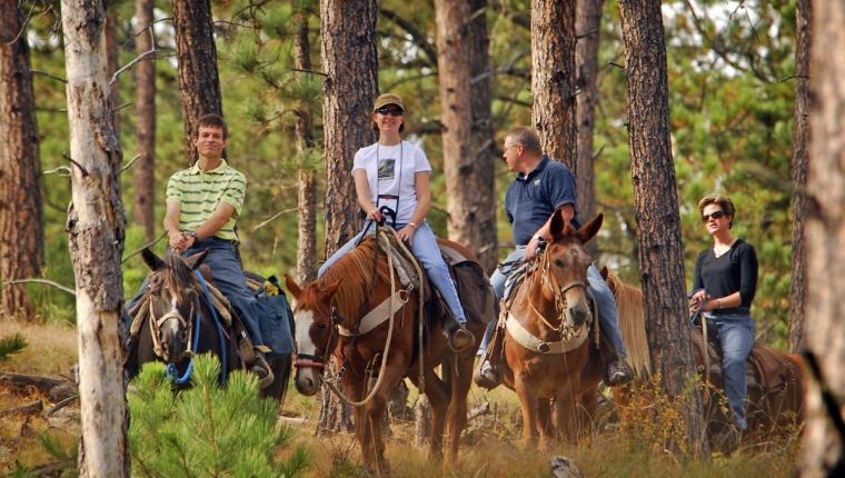 Trail Rides at Blue Bell Stables