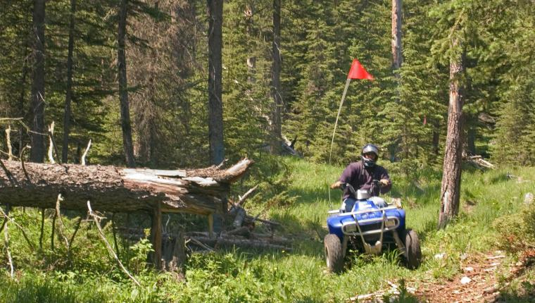 ATV & Snowmobile Rentals