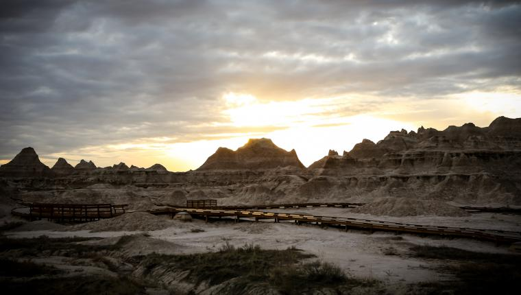 Fossil Exhibit Trail