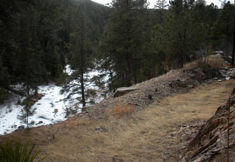 A winter walk in the Black Hills near Nemo