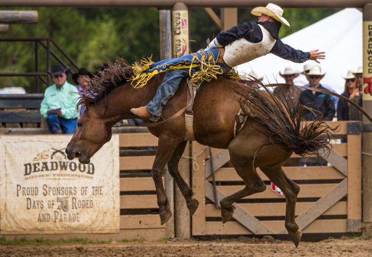 Kick Up Dust at the Top Black Hills Rodeos in the Summer 2020