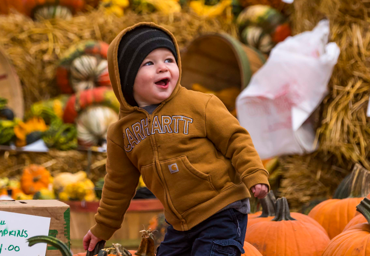 Don't Be Spooked, There's Plenty To Do This October