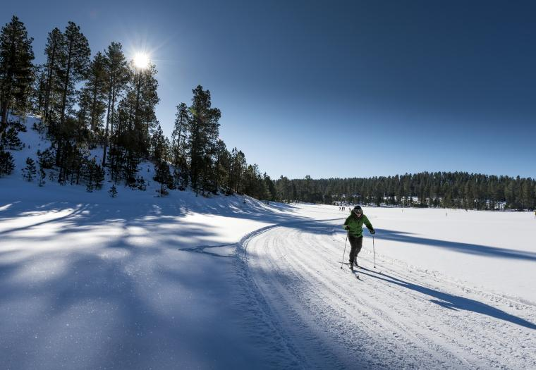 Everything You Need to Know about Cross-Country Skiing in the Black Hills