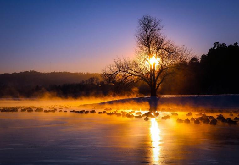 Canyon Lake Morning