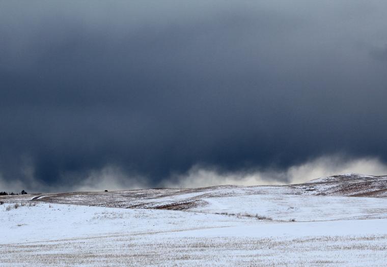 Custer Wind