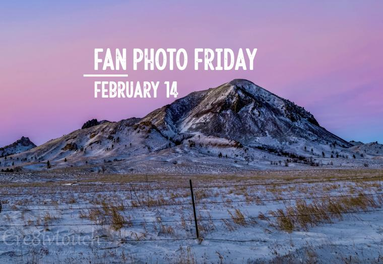 Fan Photo Friday | Feb. 14, 2020