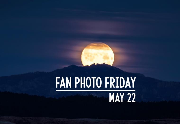 Fan Photo Friday | May 22, 2020
