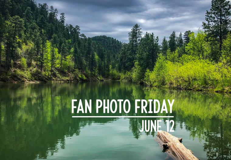 Fan Photo Friday | June 12, 2020