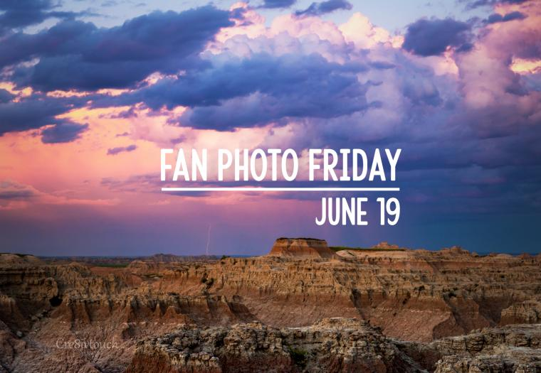 Fan Photo Friday | June 19, 2020