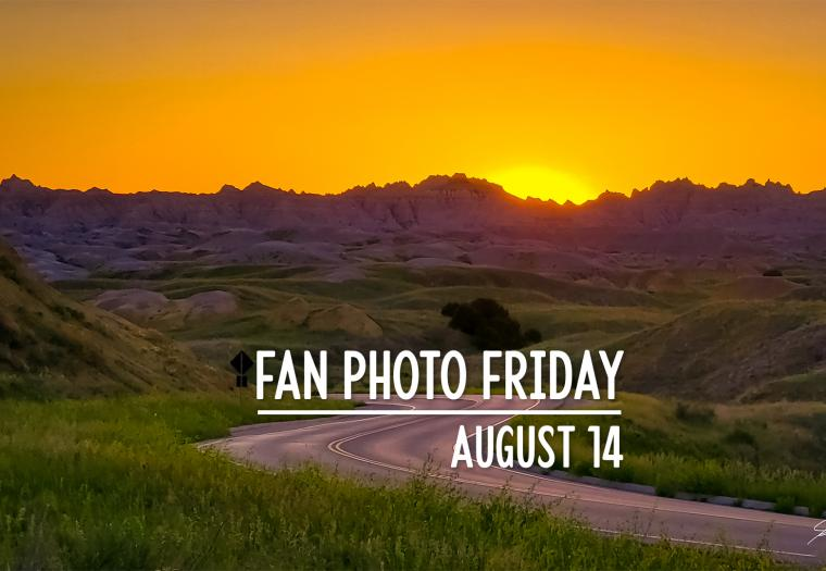 Fan Photo Friday | August 14, 2020
