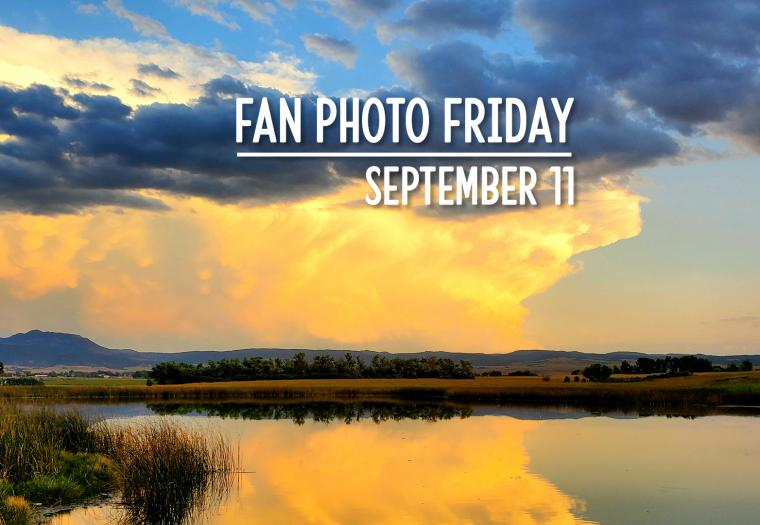 Fan Photo Friday | September 11, 2020