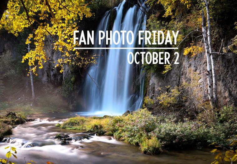 Fan Photo Friday | October 2, 2020