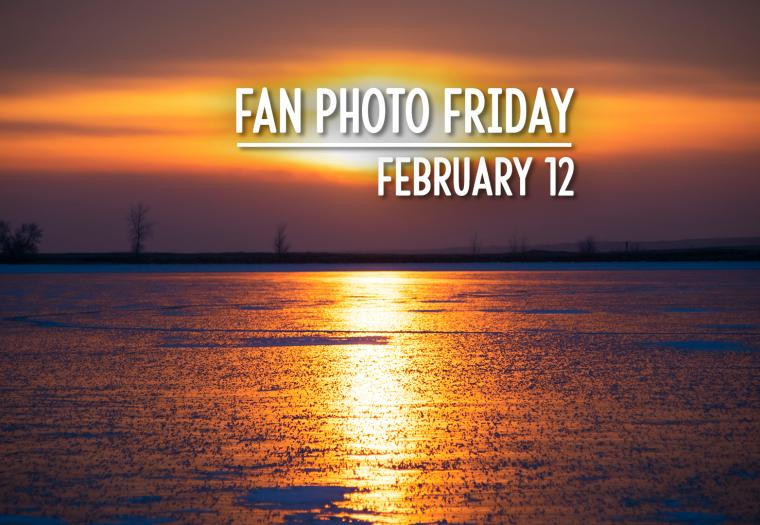 Fan Photo Friday | February 12, 2021